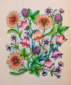 Instagram media joannetan03 - Another one from #blomstermandala. #mariatrolle #coloringmasterpiece #desenhoscolorir #florestaencantada2 #colorindolivrostop #lostoceancolors #jardimsecretoinspire #jardimsecretotop #jardimsecretolove #jardimcolorido #nossojardimsecreto #majesticcoloring #prazeremcolorir #creativelycoloring #beautifulcoloring #nossojardimcolorido #bayan_boyan #artecomoterapia #boracoloritop #livrocoloriramo #desenhosparacolorir #arte_e_colorir