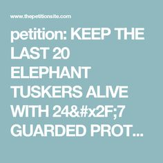 petition: KEEP THE LAST 20 ELEPHANT TUSKERS ALIVE WITH 24/7 GUARDED PROTECTION!