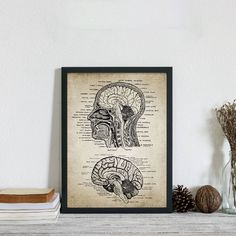 Canvas Art Prints, Canvas Wall Art, Painting Prints, Modern Art Prints, Modern Wall Art, Brain Anatomy, Human Anatomy, Types Of Art Styles, Office Wall Art