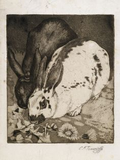 Rabbits - etching and aquatint by Charles Tunnicliffe, 1929