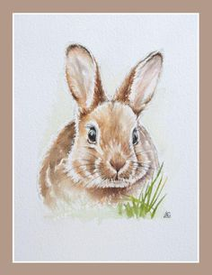 Rabbit Drawing, Rabbit Art, Bunny Painting, Painting & Drawing, Watercolor Animals, Watercolor Paintings, Lapin Art, Illustration Inspiration, Easter Art