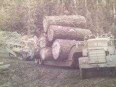Katie Marcil-BraatenOld Logging Pictures  Weyerhaeuser off road trucks before Mt. St. Helens blew