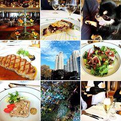 11/26 日曜日 ☀️ 今日は 暖かかった。 * 家族で 近所のお気に入り ホテル パークハイアット東京 ジランドールでランチ🍴 本当に いつ行っても 心地良い〜 接客も良いし お料理も美味しい〜 清潔で美しい クロスやカトラリー 今日も 満足でした(๑′ᴗ‵๑) * * #ランチ#レストラン#美味しい#パークハイアット東京#ジランドール#ラグジュアリー#肉#デザート#新宿#チワワ#ブラックタン#犬#かわいい#散歩#写真 #写真好きな人と繋がりたい #空#イルミネーション#クリスマス #ビューティー#lunch #delicious #food #hotel #sky #blue #dog #photo #xmas #family