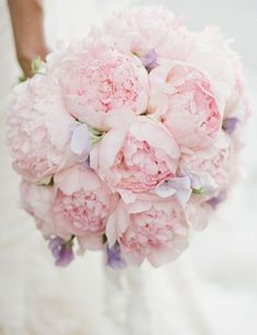 Pink Wedding Ideas with Elegance – MODwedding Magical bridal bouquet made of pink peonies! In between lilac-colored small flowers l Photo via The Little Book of Secrets # bridal bouquet # bridal bouquet peonies … Blush Peonies, Peonies Bouquet, Pastel Bouquet, Blush Bouquet, Boquet, White Peonies, Yellow Roses, Light Pink Bouquet, Blush Pink