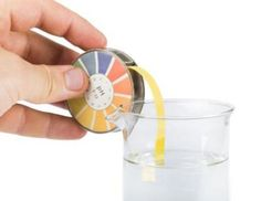 The body's pH level influences its health. The acid-base balance of your blood is significant for normal daily function, healing and digestion. The acidity or alkalinity level of your body is determined by a pH, potential of hydrogen, scale. Acidic Body Symptoms, Alkalize Your Body, Acid Base Balance, Blood Plasma, Ph Levels, Alkaline Diet, Bone Health, How To Increase Energy