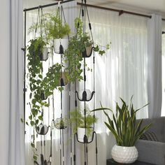 Excited to share this item from my shop Vertical garden multiple plant hanger living wall live column room divider hanging shelves wall planter macrame plant hanging gift Window Shelves, Plant Shelves, Hanging Shelves, Window Shelf For Plants, Room Divider Shelves, Room Dividers, Best Indoor Plants, Indoor Hanging Plants, Outdoor Plants