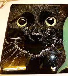 Black cat fused glass panel available from my Facebook page Lynne Day Glass Designs.