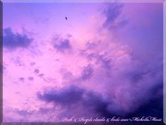 Pink & Purple clouds & birds soar     thinkingpinkx2