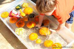 Little Minds: Pumpkin Activities for your Tot!