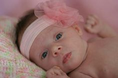 Newborn Photography / Baby Girl