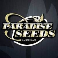 Paradise Seeds Cannabis Seeds Online, Buy Cannabis Seeds, Growing Weed, Buy Weed Seeds, Seed Bank, Paradise, Zodiac Quotes, Raised Beds