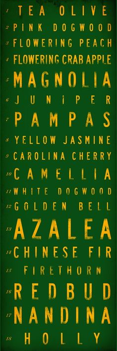 Golf course hole names typography Masters Augusta National