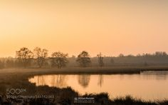 Misty Glow by williammevissen. Please Like http://fb.me/go4photos and Follow @go4fotos Thank You. :-)