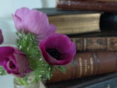 Books and flowers - can you wish for more ;o)