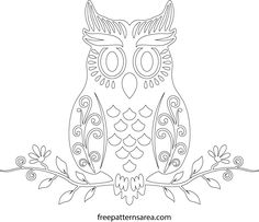 Cute Owl Free Craft Template Outline Drawing