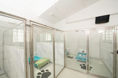 Pet Hotel Hadley is a unique upscale boarding kennel in Hadley, MA that incorporated a marble Wilson Art look with Glass Stall Fronts and Cabins to create a very bright and open feeling facility. Give Jessie a call or stop in and visit!