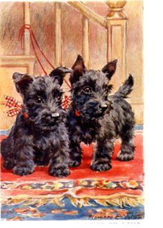 Baby Scottie Dog s On the Stairs Wait For Mailman by NoCrybabyDoGs, $17.00