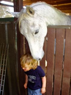 #Horse love