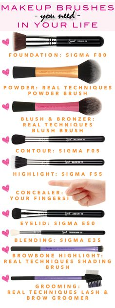This chart & review has all the makeup brushes you need. I really want that sigma foundation brush. I've been in need of a better one! I have all of the real techniques brushes on this list and they are great!  http://annemariemitchell.com/2014/05/apply-makeup-like-a-pro-makeup-brushes-you-need-i...