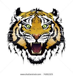 stock vector : tiger vector