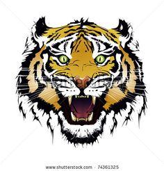 stock vector : tiger vector