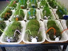 grass-caterpillar-craft-project-001.jpg 1 024 × 768 pixels