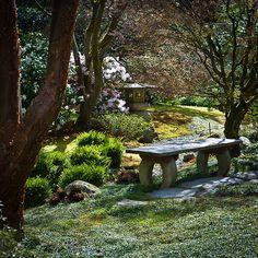 Seattle Japanese Garden bench and lantern Seattle Japanese Garden, Japanese Garden Plants, Japanese Garden Landscape, Asian Garden, Japanese Gardens, Garden Waterfall, Christmas Preparation, Bonsai Garden, Outdoor Settings