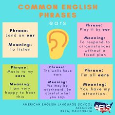 Here are some common idioms using ears! English Phrases, English Words, English Lessons, English Language, English Study, Learn English, Common Idioms, Idioms And Phrases, Important Quotes