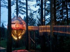 Hireable treehouse north of Auckland!  Must think of a reason to throw a party...