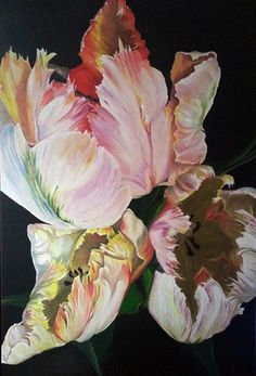 Parrot tulips. Oil on canvas. Size :80 x120 cm.