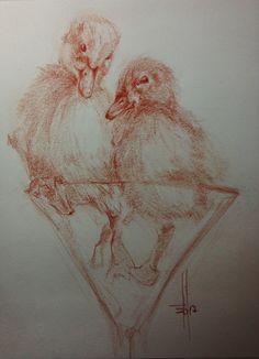 Dibujo Patos en copa a sanguina grasa por Francisco Javier Abellán