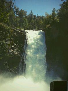 Salto del Puma - sur de Chile (Huilo huilo)