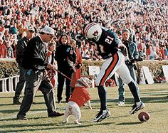 Great moment in UGA football history!