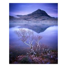 Assynt, in northwest Scotland -- Bruce Percy Photograph