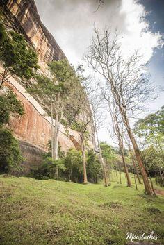 Sri Lanka - Lions Rock Sigiriya