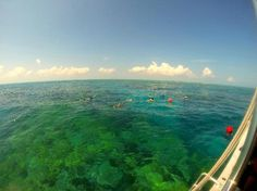 Aquatic Adventures, Ramrod Key Photos - Featured Images of Ramrod Key, Florida Keys - TripAdvisor
