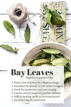 Herbal Medicine Bay Leaves are for more than just flavor. They add a punch of power to healing spells and are great for protection and uncrossing. Try writing a wish or goal on a bay leaf and burn it! - Nourish Your Mind, Body and Soul! Magic Herbs, Plant Magic, Herbal Magic, Healing Spells, Healing Herbs, Burning Bay Leaves, Wicca Herbs, Green Witchcraft, Witchcraft For Beginners