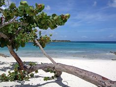Playa Pesquero - Holguin, Cuba