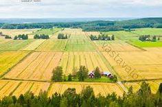 Pohjanmaan pellot. Tämä on yksi Pohjanmaan pelloista. Pohjanmaan alue on todella tasaista alankoa. Sen takia, juuri joetkin kulkevat hitaasti.  Kirjoittanut: olivia ja vilmiina