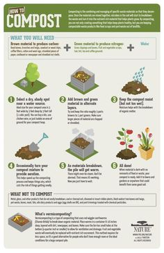 How-To Compost Infographic from PBS