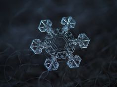 Ice crown Snowflakes