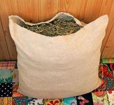 Изготовление матрасов и подушек из крапивы, кипрея, рогоза и других лечебных трав. Healthy Life, Bean Bag Chair, Diy And Crafts, Throw Pillows, Workout, Sewing, Handmade, Herb, Facts