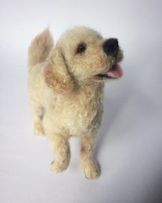 Needle felted Miniature Goldendoodle, dog sculpture