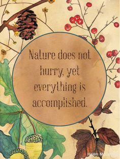 Nature does not hurry, yet everything is accomplished.Nature does not hurry, yet everything is accomplished. Great Quotes, Me Quotes, Inspirational Quotes, Motivational Quotes, Inspiring Sayings, Beauty Quotes, Amazing Quotes, Wisdom Quotes, Citation Nature