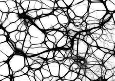 De ani de zile oamenii au știut faptul ca lipsa de somn determină probleme de percepție.Potrivit unui nou studiu condus de Dr. Sigrid Veasey de la Centrul de