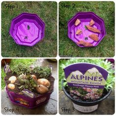 I've been meaning to get around to using up our empty Quality Street tubs since Christmas and this weekend has been the first time we had no detailed plans. So, I decided our first project with recycling the tubs was to make an Alpine mini garden. Here's how to do it, and obviously it would(...)