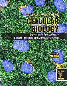 Biochemistry And Molecular Biology Of Plants Ebook Molecular
