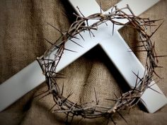 Holy Week is a time to reflect and pay homage to the greatest sacrifice ever made for those of us who follow Jesus.  During this week, I have had the opportunity to think about my own personal journey as well as the journey being taken by MMI.       Jesus was sent by God to provide an example for all