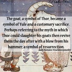 The goat, a symbol of Thor, became a symbol of Yule and a customary sacrifice. Perhaps referring to the myth in which Thor could slaughter his goats then revive them the day after with a blow from his hammer; a symbol of resurrection.