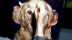 Commissioned Pet Portrait Time Lapses By Artist Cameron Dixon | Bored Panda
